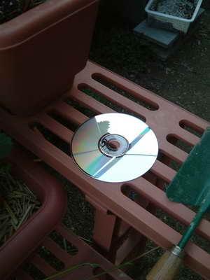 CDじか置き