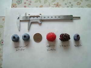 グレンアンプルの果実