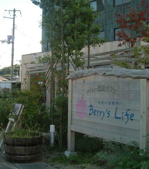 Berry's Life
