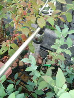 灌水道具2