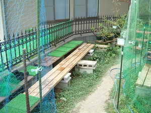 ブルーベリーの庭6
