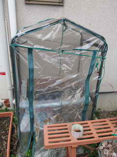 温室を修理