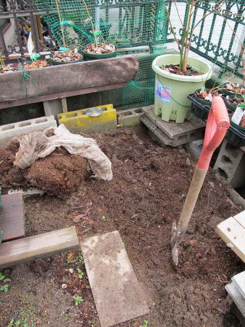 ブルーベリーの庭改造
