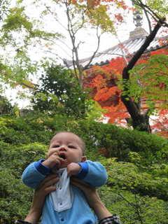 たっくん in 三滝寺