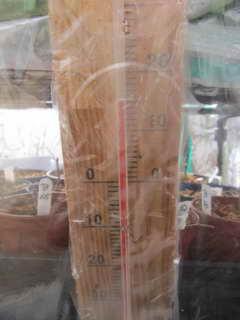 ブルーベリー温室の温度計