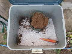ブルーベリーの用土