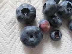 ブリジッタの果実
